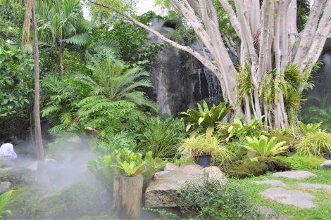サティアン 庭園