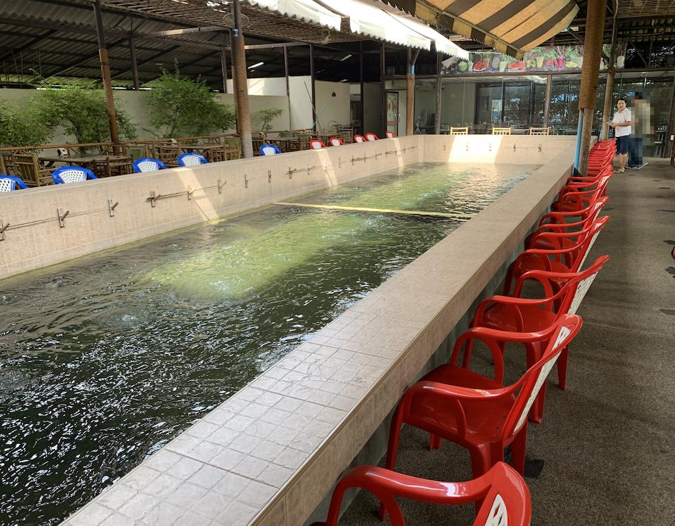 バンコクでエビ釣り!釣った後すぐに食べれるレストラン併設の釣り堀「えびのつりぼり」